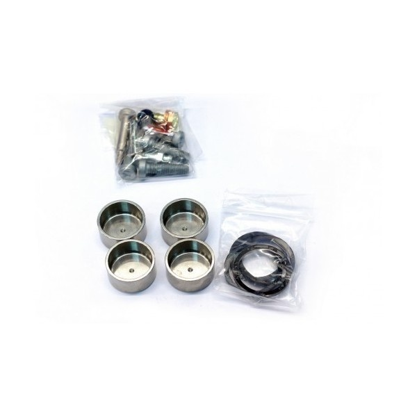 4 Piston Radial Caliper Rebuild Kit